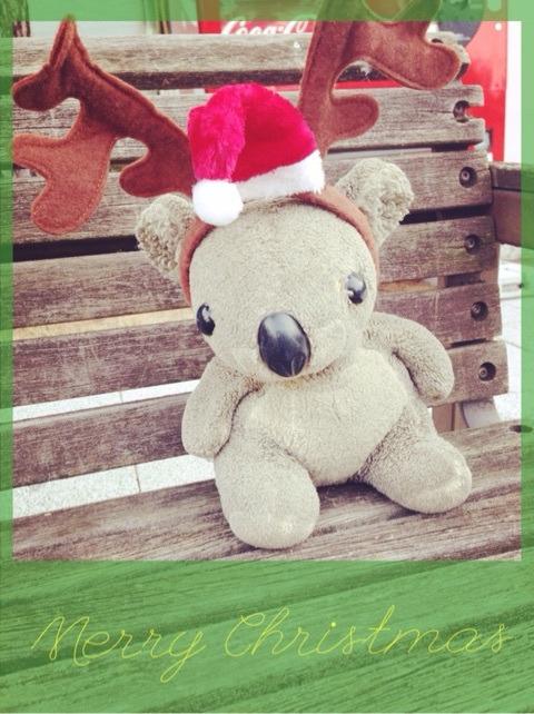 メリークリスマス‼︎