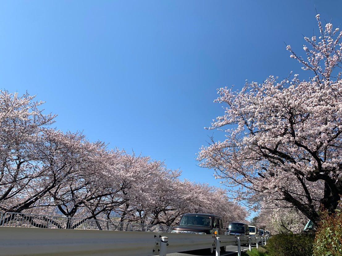 敷島公園に向かう国体道路はもうすでに桜が咲き始めています とても綺麗ですね!!! そしてクインテット敷島店の近くに スタバが出来ました️ お花見やお散歩の前にヘアスタイル素敵にしませんか? 春ヘアご提案いたします🏻♀️  敷島店︎0272102115 岩神店︎0272265556 _________________________________________ check quintetto HP︎︎︎www.quintetto-hair.com