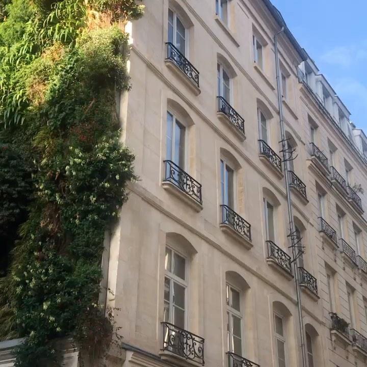 昨年のパリコレ参加時に見つけたパリ11区の素敵なグリーンガーデン、狭いスペースにパリ市民の粋な植栽。